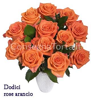 dodici-rose-arancio