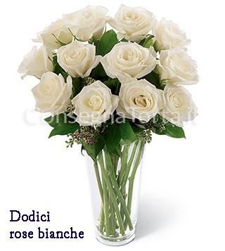 dodici-rose-bianche