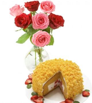 torta-mimosa-con-bouquet-di-7-rose-rosse-rosa